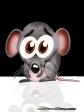 ratinho assustado